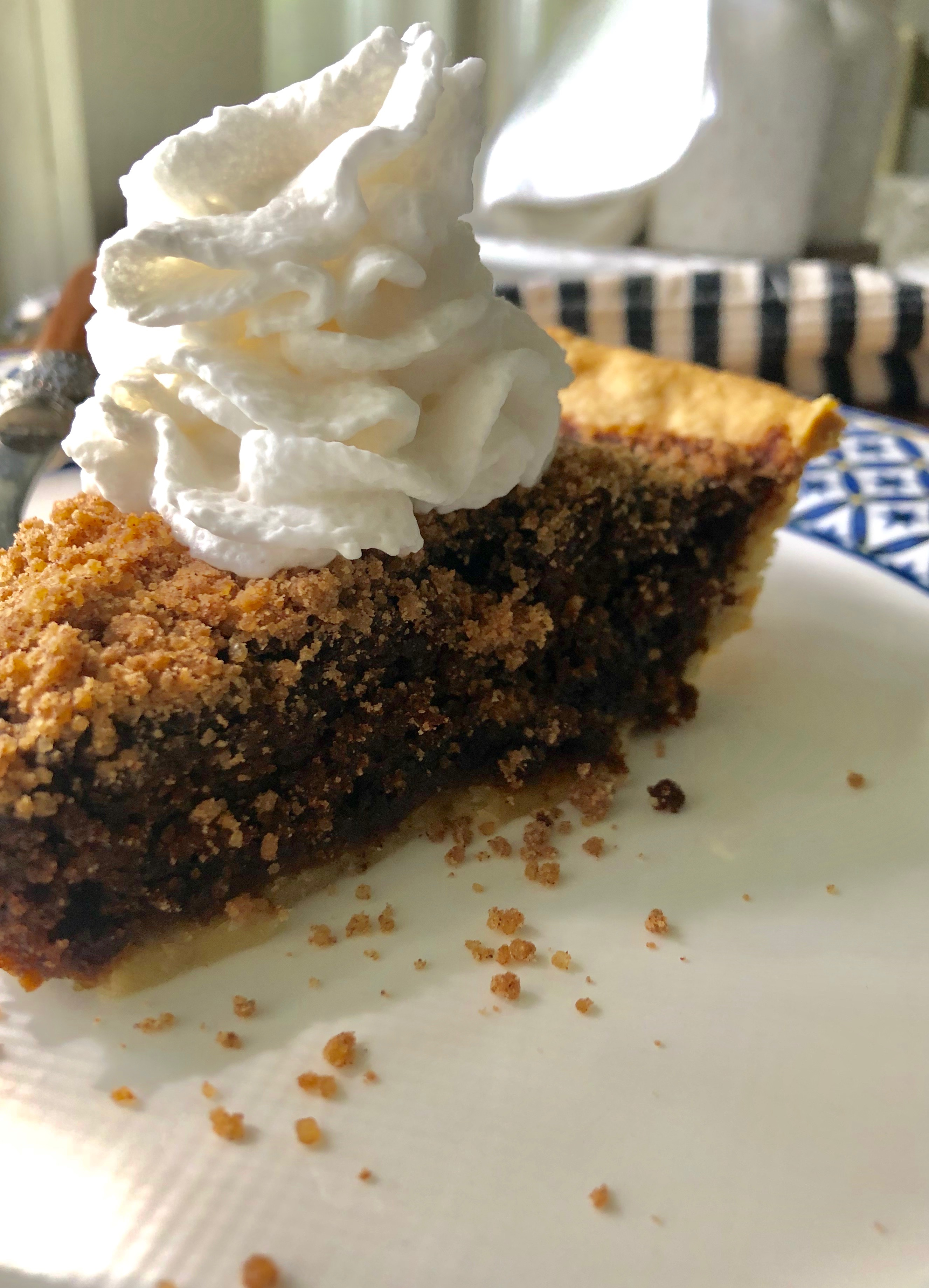 Shoo-Fly Pie recipe is delicious and has a gingerbread taste that will taste amazing when gathering around the campfire.